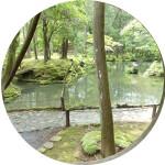 Japon Temoignage voyage vms voyages