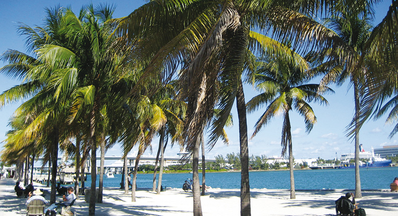 séjour linguistique usa anglais à miami plage
